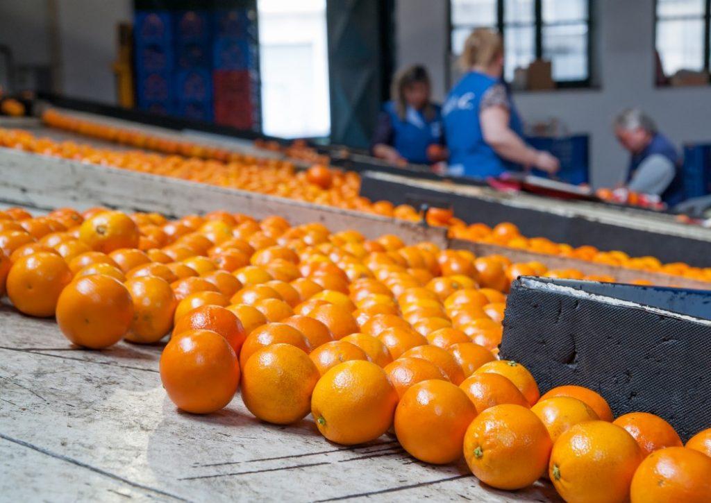 Trabajar en la Naranja